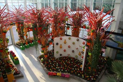 In Haus Flora