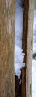 Winterwald 5