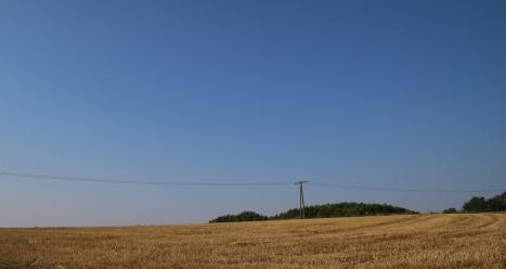 Kornfelder, abgeerntet. Südseite des Hüggels