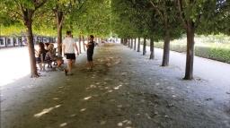 Paris_August_2016_09